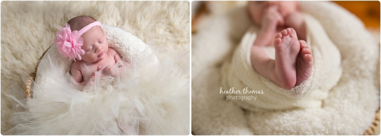 newborn girl in basket with tutu and head band on photo by heather thomas photography